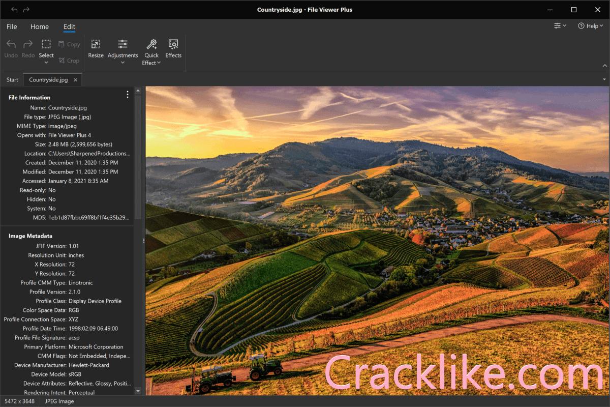 File Viewer Plus 4.0 Crack + Full Torrent Key Download 2021 {Mac+Win}