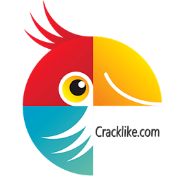 Movavi Photo Editor 6.7.1 Crack With Patch Full Torrent Free Download 2021